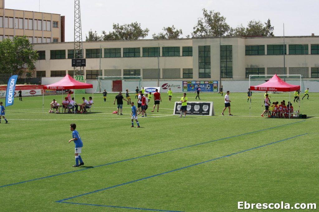 torneos futbol base